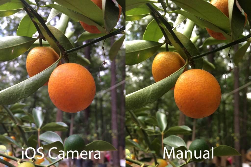 Manual-portakal